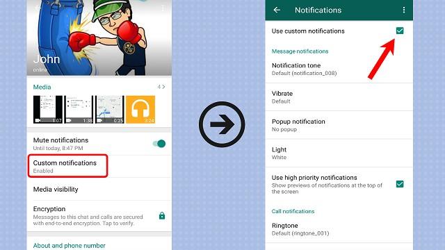 whatsapp custom notification,