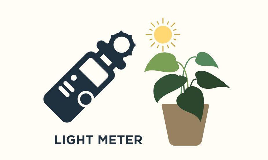 best light meter app for plants