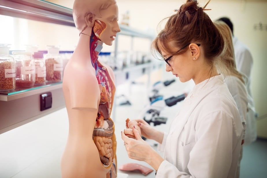 Human Anatomy Apps for Medical Students