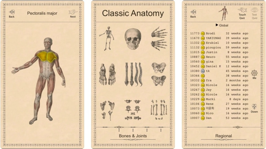 anatomy game app, interactive anatomy app