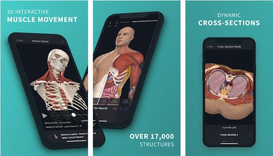 learn anatomy app, anatomy app android