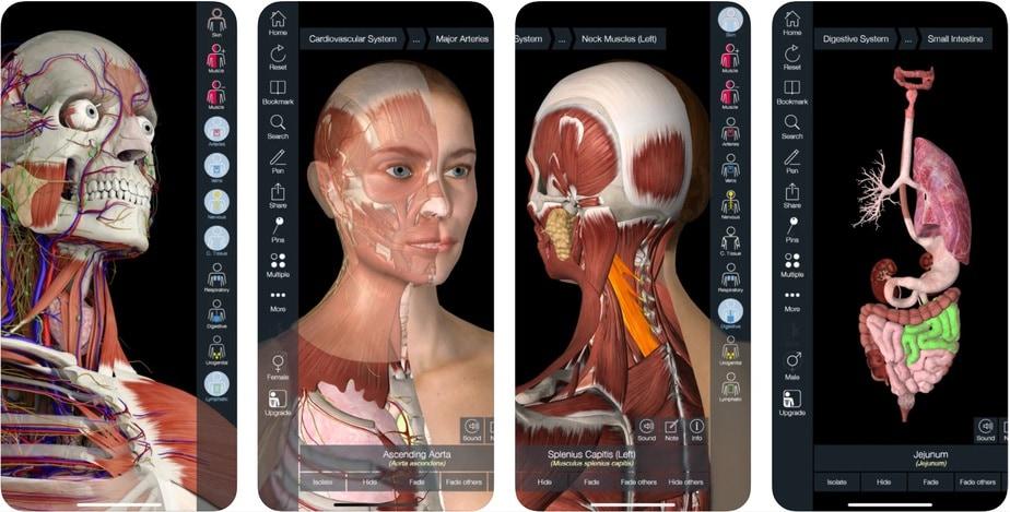 anatomy app for iphone, human anatomy app